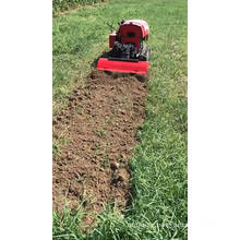 Greenhouse Low Branches Farm Mini Cultivator RotaryTiller