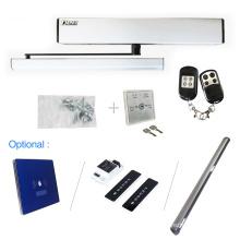 2020 hot sale & competitive price dsw100n automatic swing door operator/opener