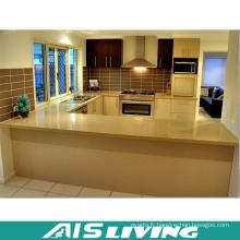 Petite armoire de cuisine avec poignée pour projet (AIS-K400)