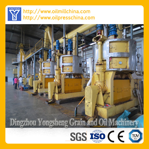 Corn Germ Oil Processing Equipment