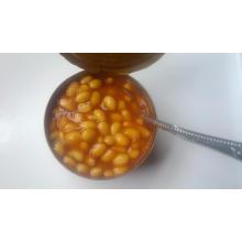 Köstliche Dosengebackene Bohnen in Tomatensauce