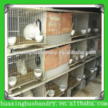 hot selling good quality used poultry battery cage for sale