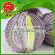 2015 cebolla roja fresca directa de manuafactuer chino