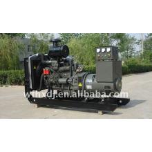 Generador diesel Ricardo