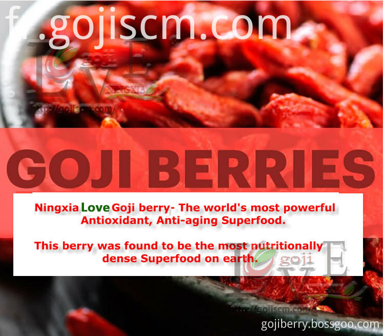 Dried Goji Berry Hot Sale benifits