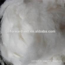 haarlose Kaschmir-Faser, weiße Kaschmir-Faser, reine Kaschmir-Faser