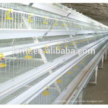 équipements de ferme avicole de poulets de chair