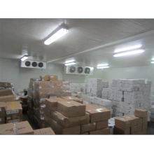 OEM Freezer for Food Ce Approved