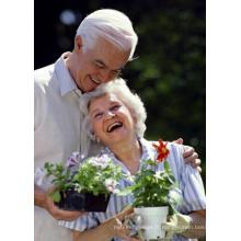 (Maléate d'énalapril) - Traitement du maléate d'énalapril à haute pression sanguine