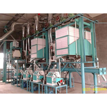 10-30ton / D Wheat Milling Machine Plant