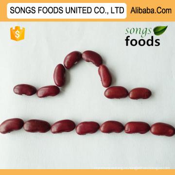 Cultivos agrícolas Dark Red Kidney Beans