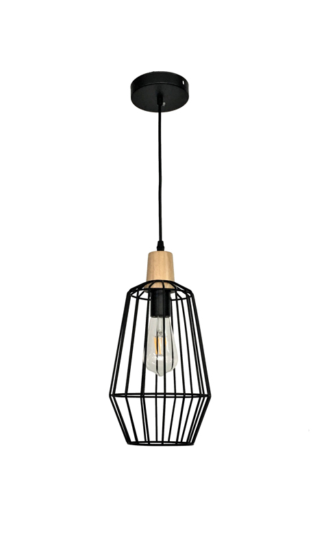 Black Modern Edison Light
