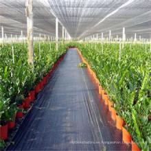 Tela tejida UV de la cubierta de los PP de la planta de jardín tratada