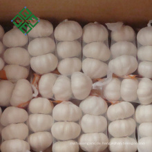 2018 China heißer Verkauf frischen reinen weißen Knoblauch Preis