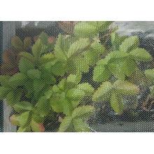 Maille d'insecte d'agriculture / Filet de maille de jardin