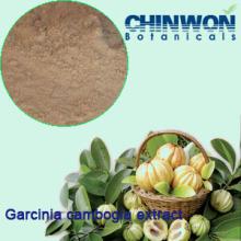 62. Weight Loss Hydroxycitric Acid 60% Garcinia Cambogia Extract