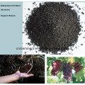 seaweed extract flake seaweed extract