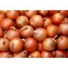 De Buena Calidad Nuevo Crop Fresh Yellow Onion