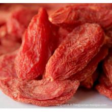Gingembre rouge séché Ningxia - 280 grains / 50g