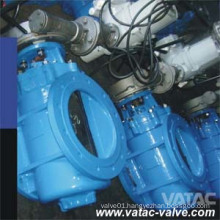 Gear Operated Soft Sealing RF Flanged Cast Eccentric Plug Valve