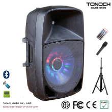 OEM ODM 12 Zoll Plastik PRO Audio mit ausgezeichneter Leistung