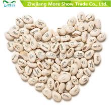 Magic White Bean Seeds Planta de Regalo Creciente Mensaje Word Love Office Decoración para el Hogar