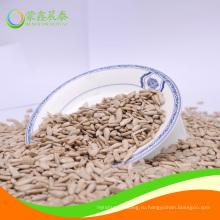 Ядро семян подсолнечника хлебопекарного сорта