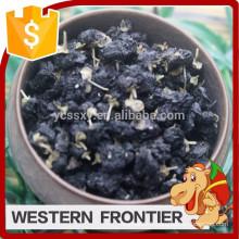 Fournisseur de produits alimentaires naturels séchés style noir goji berry