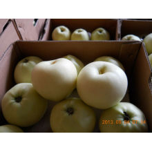 Gloden delicious apple in large quantity with low price