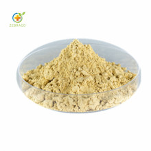 Factory Supply Natural Myricetin 98% Powder From Bayberry Bark Extract