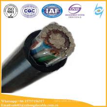 Cable de servicio concéntrico aéreo 2x6mm2 10mm2 16mm2 con el cable de comunicación