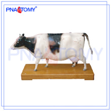 PNT-AM43 Cattle Acupuncture Model animal anatomical model