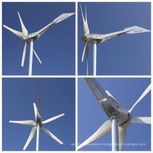 Sky Series 800W Wind Turbine for Homeuse