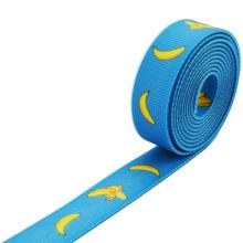 Sangle enduite de PVC en plastique de vente bon marché pour le harnais de sécurité de chien