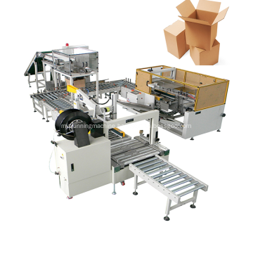 Low Price Case Packing Machinery