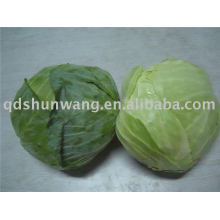 2011 chinese fresh round green cabbage