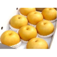 Pear Mahkota Golden Quality