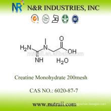 wholesale creatine monohydrate powder 99.5% 80mesh and 200mesh 6020-87-7