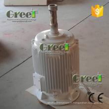 Générateur vertical d'aimant de type de 1-50kw permanent pour des ventes