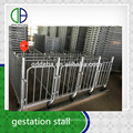 Good Quality Pig Gestation Stall Crate For Pig Hot Sale