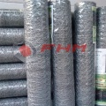 GAW Hot Dipped Galvanized Chicken Wire zum Schutz