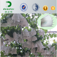 Профилактика насекомых и химические застекленная питомник бумага винограда плодового питомника выращивание мешках на экспорт в Чили