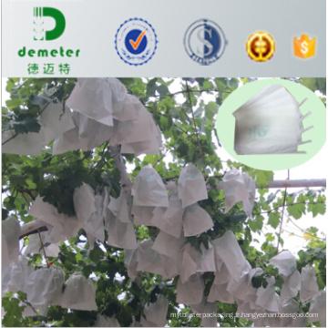 Insect & Chemical Prevention Sacs de culture de pépinière de raisin de papier glacé d'Apery de papier pour exporter au Chili