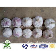 Normaler weißer Knoblauch Neuer Ernte 2016 Vom chinesischen Festland