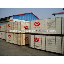 Contraplacado de filme (ShandongLinyi madeira produtos)