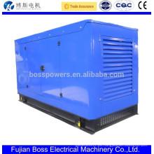 14KW 60HZ grupo electrógeno silencioso con motor diesel yangdong