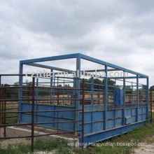 Digital livestock scale