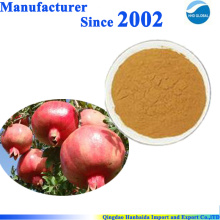 100% pure natural Pomegranate Bark Extract powder