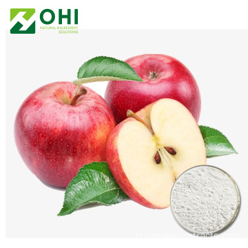 Apple Özü Polifenoller Toz 50 ~ 80% UV-VIS