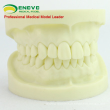 VENDA 12564 Dental Prática Preparada Dental
